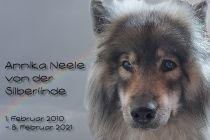 2021-02-08_Neele